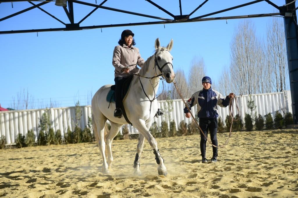 Конные клубы Ташкента: погарцуем?