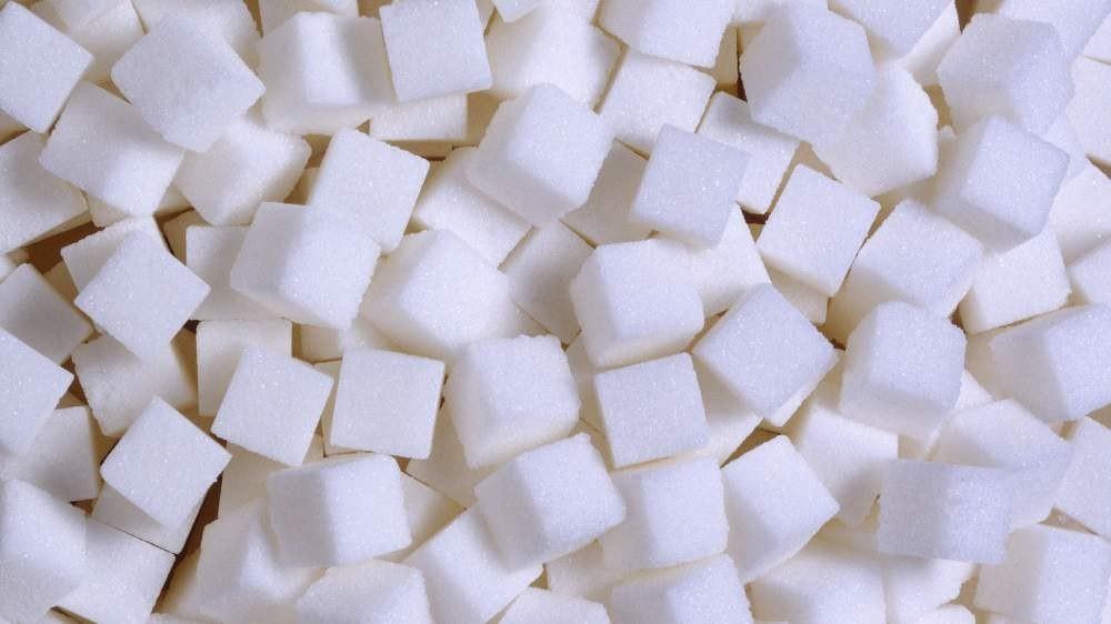 В Ташкентской области идет строительство сахарного завода