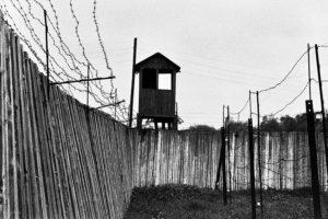 Инфографика: сколько заключенных трудилось в лагере Узбекской ССР?