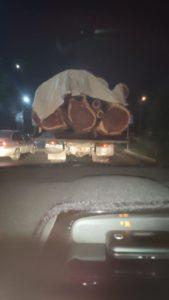В Ташкенте задержан дровосек