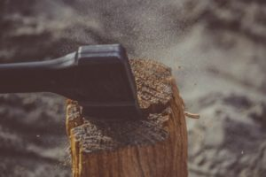 Госкомэкология запустила телефоны «горячей линии». Обещают реагировать на вырубку деревьев