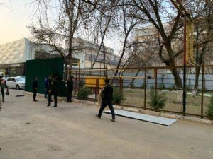 В Ташкенте предотвратили рубку 74 деревьев