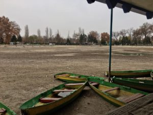 «Деревья – наш самый большой актив»: что ждёт парк Гафура Гуляма?
