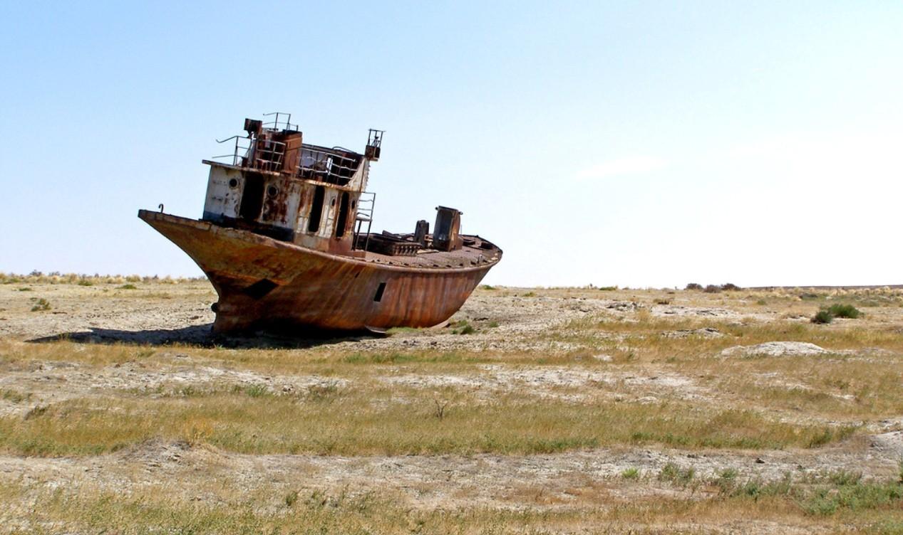 С 1990 года реализовано более 100 программ и проектов по спасению Аральского моря