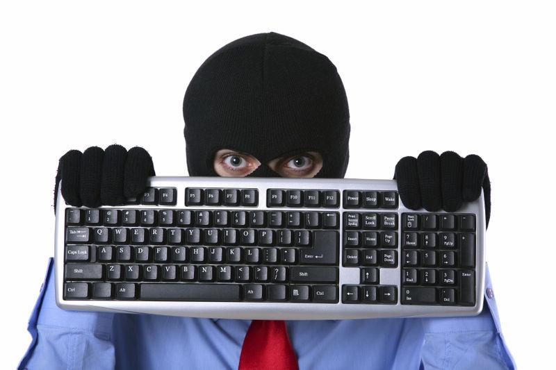 В СНГ будет совместная программа борьбы с киберпреступностью