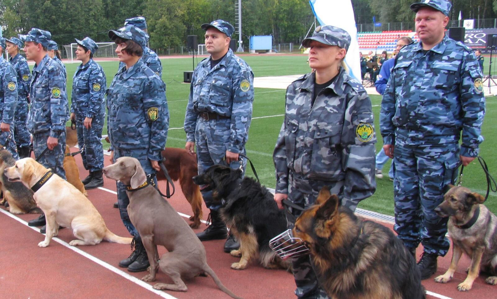Собак всех возрастов и пород представит Международная выставка в Ташкенте