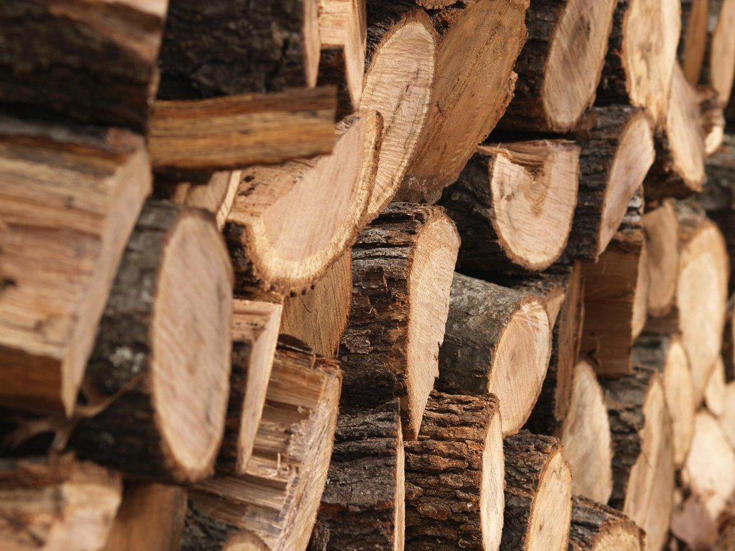 Кировскую древесину незаконно вывозили в Узбекистан