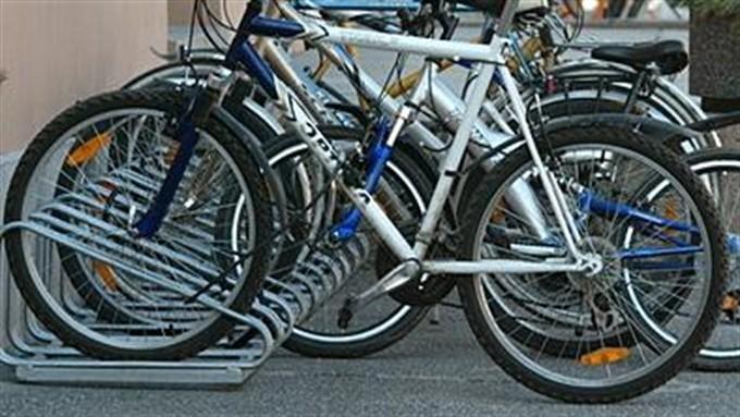Урганч давлат университетида 100 га яқин киши ишга велосипедда қатнайди