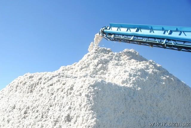 Ўзбекистон деҳқон ва фермерлари 3 миллион 400 минг тоннадан зиёд пахта хирмонини йиғди