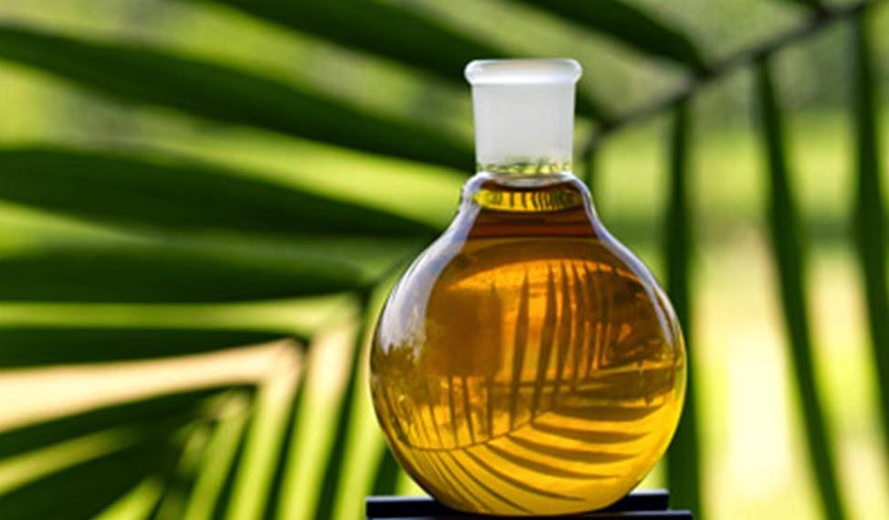 Узбекистан увеличивает импорт пальмового масла из Малайзии