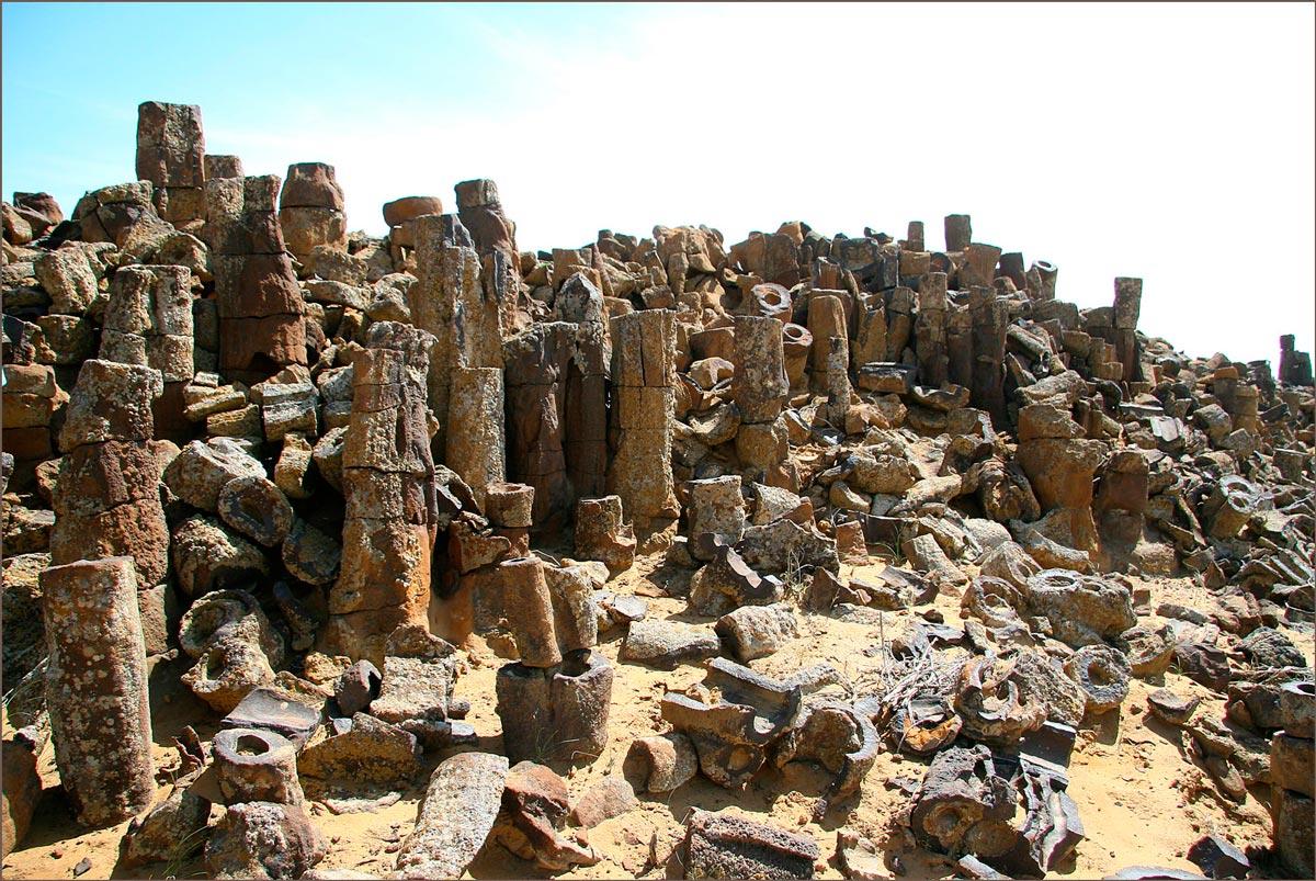 «Каменный лес» в пустыне Кызылкум