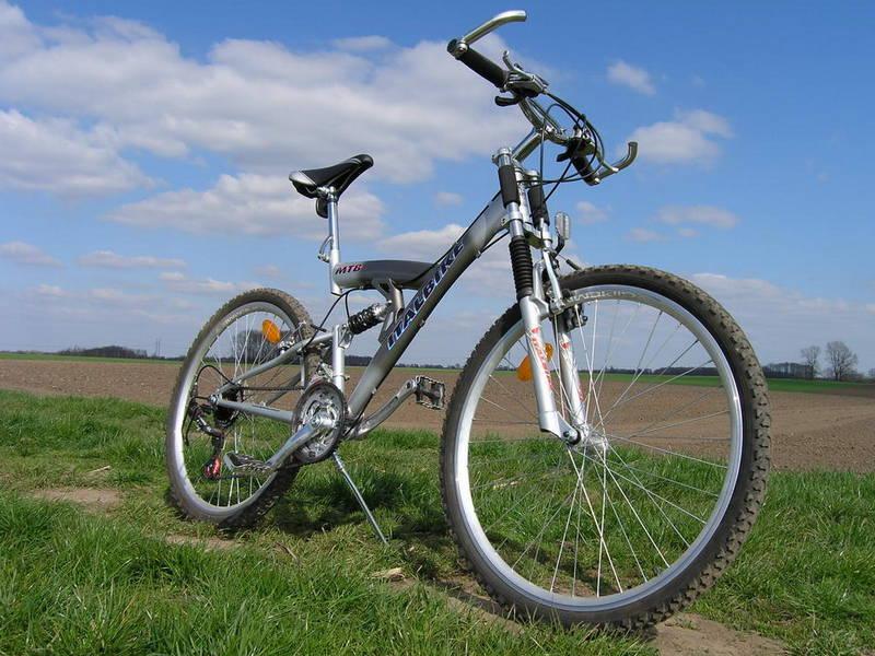 157 велосипедов для олимпийского резерва