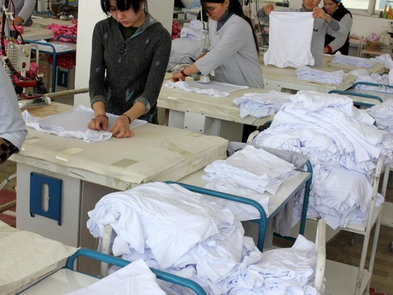Будет продано 700 тыс.тонн хлопка и текстиля на $800 млн.