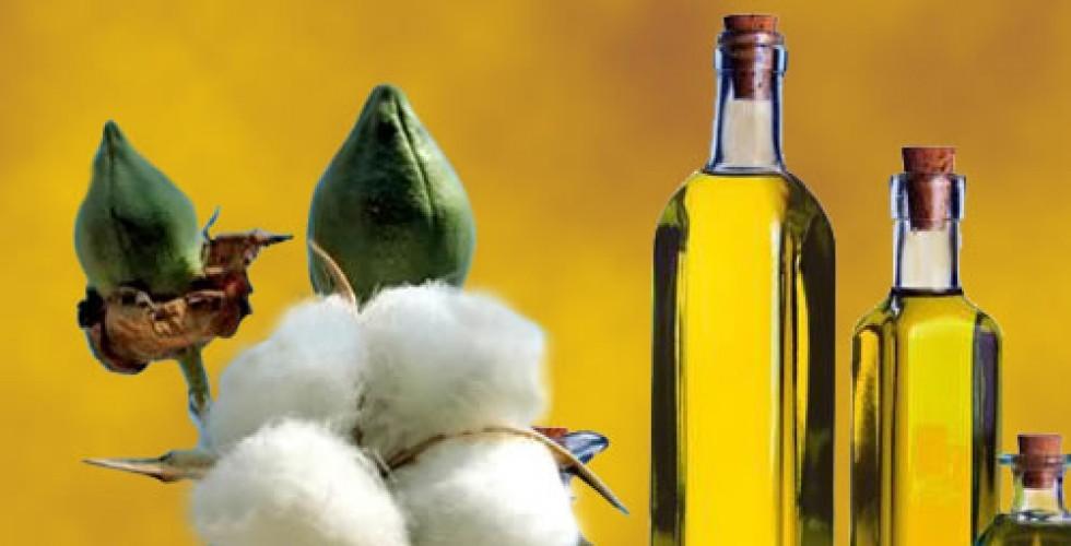 В Сурхандарьинской области ликвидирован подпольный цех производства хлопкового масла