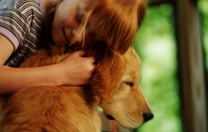 ННО «Mehr va Oqibat» словом и делом утверждает гуманное отношение к животным
